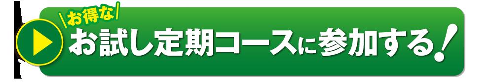 定期コース初回限定特別価格500円
